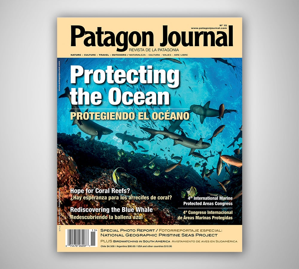 Image of Patagon Journal #15