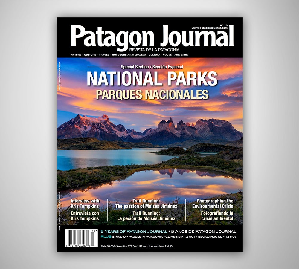 Image of Patagon Journal #13