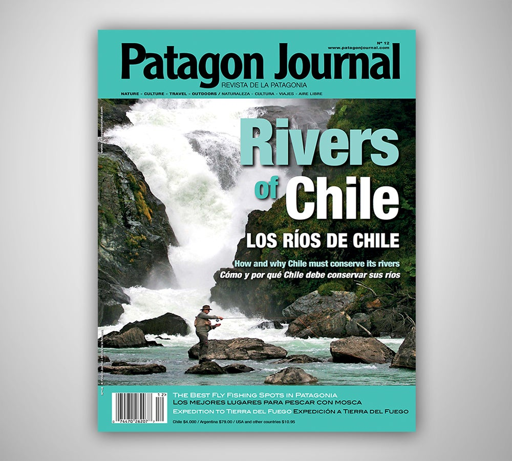 Image of Patagon Journal #12
