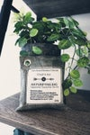 Charcoal air purifying bags