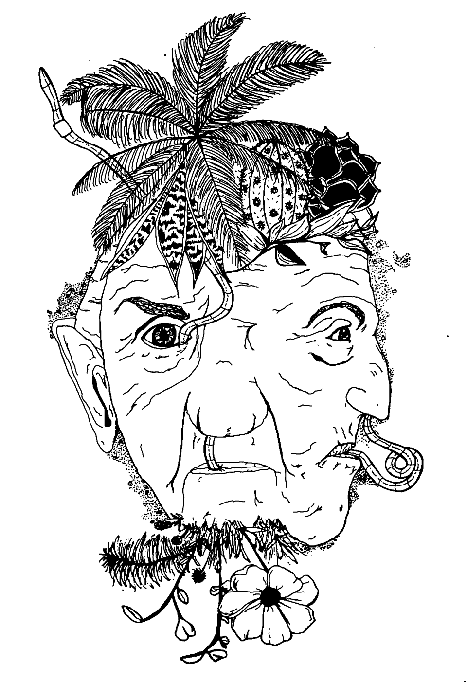 Image of 2-Faced