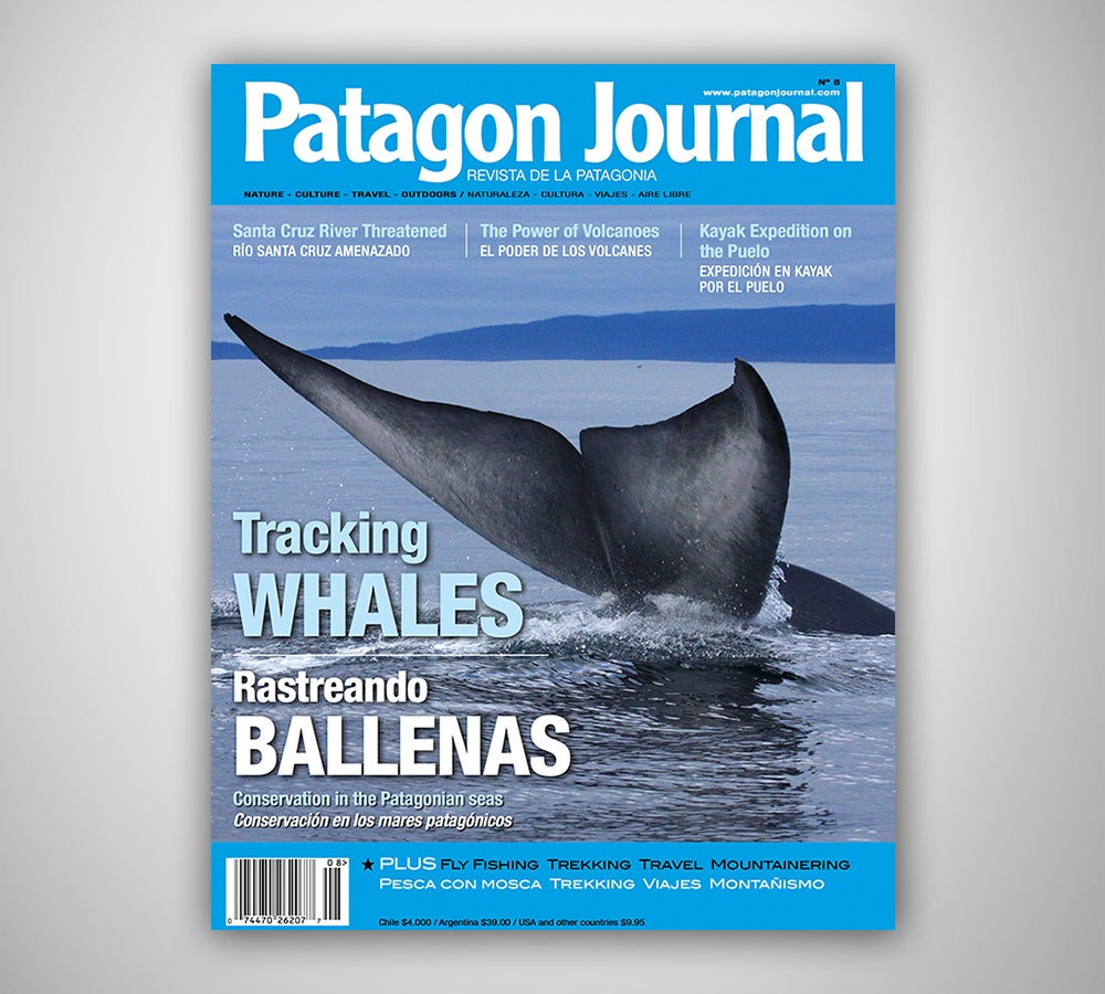 Image of Patagon Journal #8