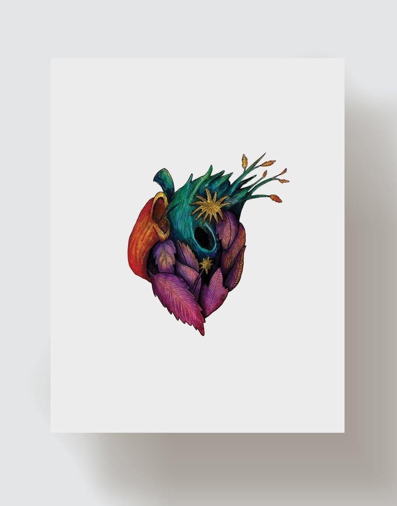 Image of El Corazón del Desierto