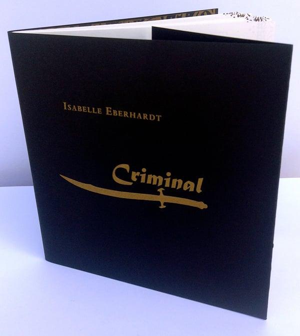 Image of Criminal: Writings