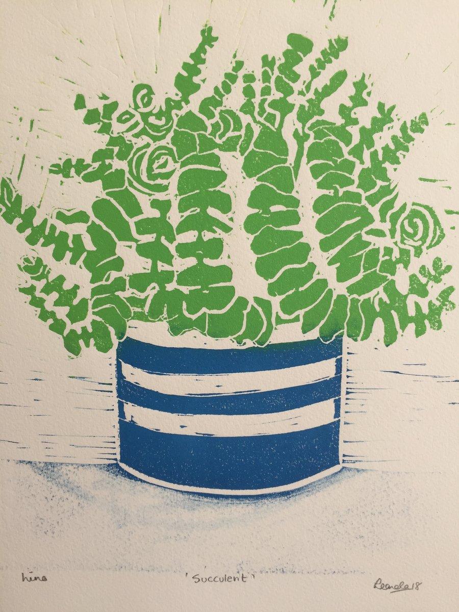 Image of Succulent 2