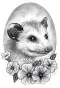 Image of Petunia PRINT