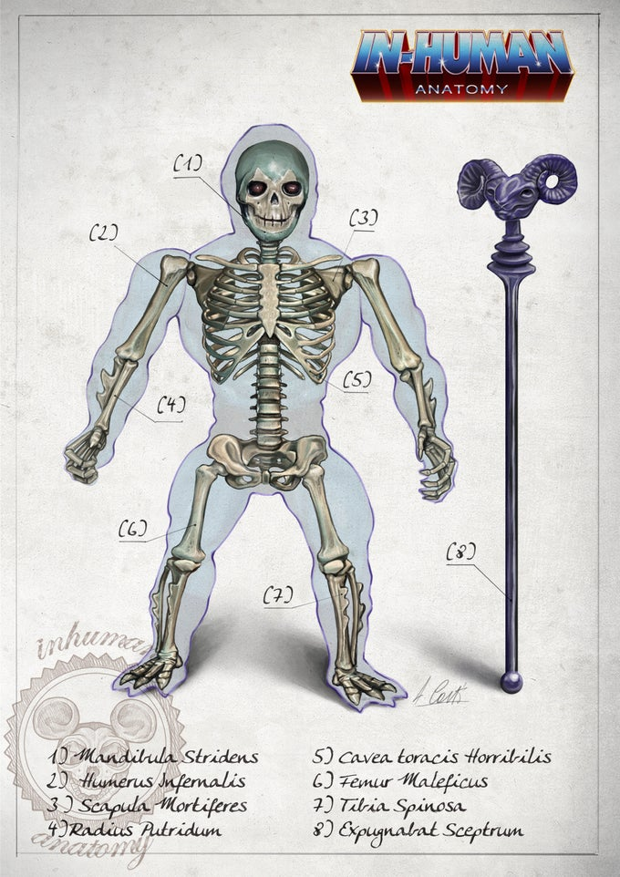 Image of SKELETOR- ANATOMY  limited edition of 100 Giclèe print on fine art canvas