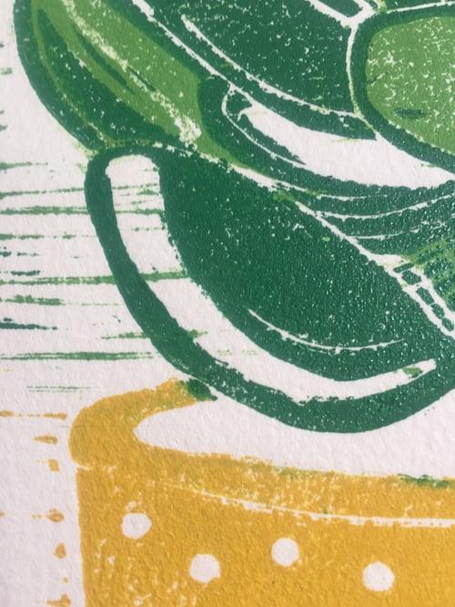 Image of Succulent 3
