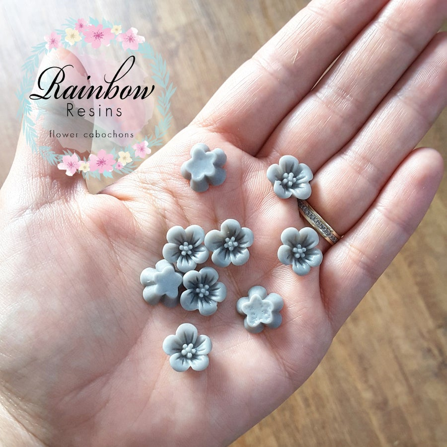 Image of Grey blossoms x 10