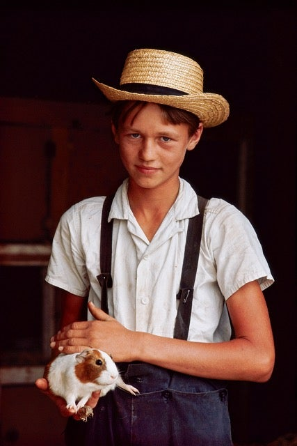 Image of Amish Boy with Guinea Pig