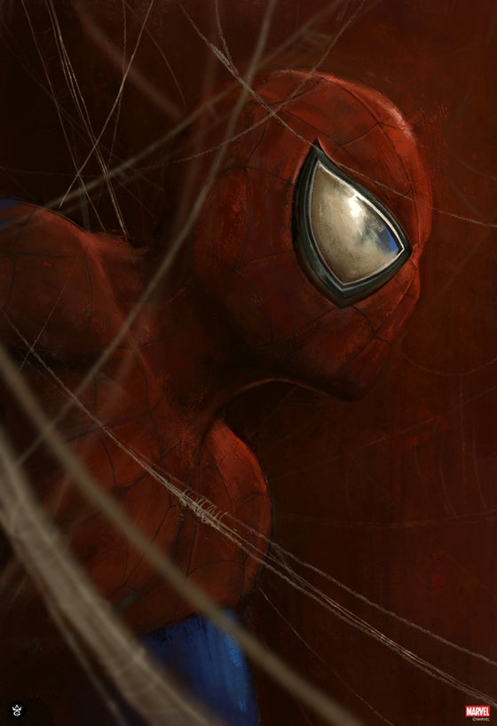 Image of Spider-Man AP Edition