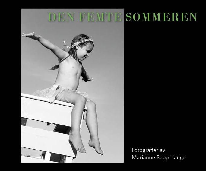 Image of Bok: Den Femte Sommeren