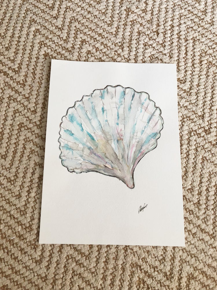 Image of Shell