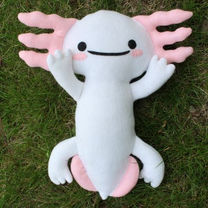 Image of Axolotl