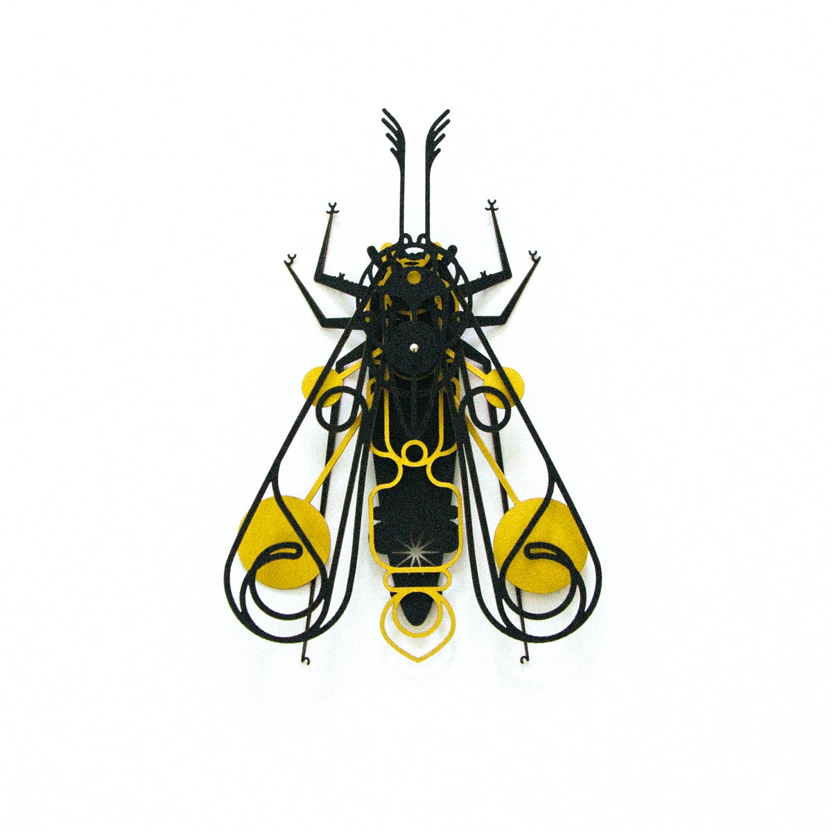 Image of INSECT - Moth_001