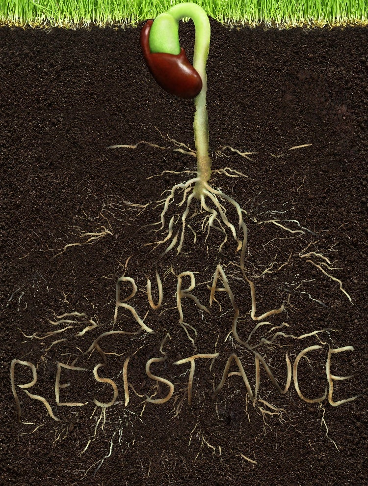 Image of Rooted Rural Resistance Shirt