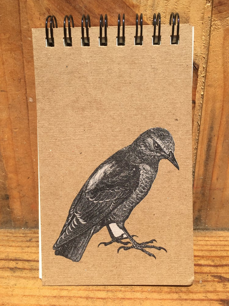 Image of Rock Thrush Notepad