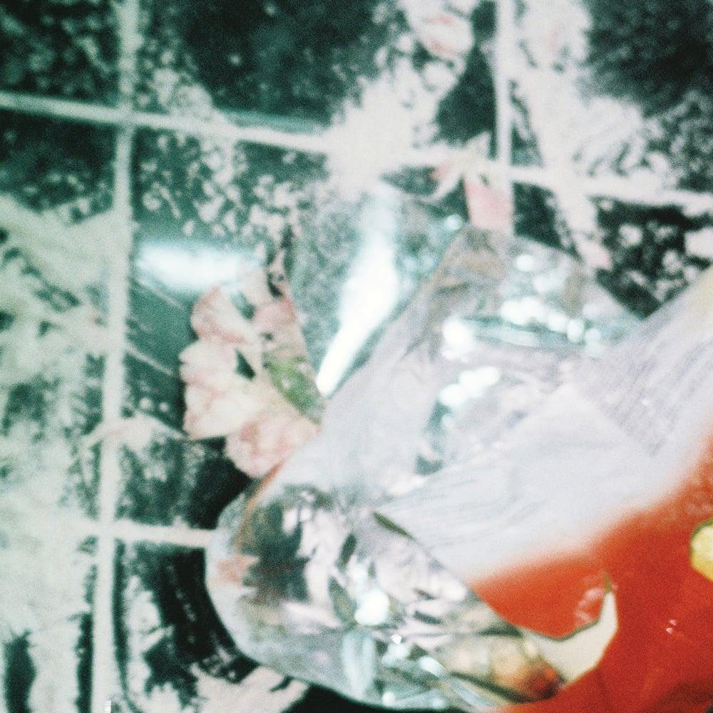 Image of AVN034 - SHXCXCHCXSH - SHULULULU