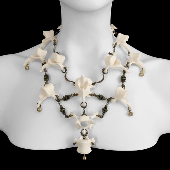 "Image of ""Ramonda"" Otter Vertebrae Necklace"