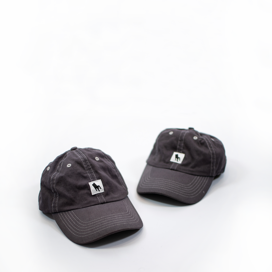 Image of Dyed Logo Hat