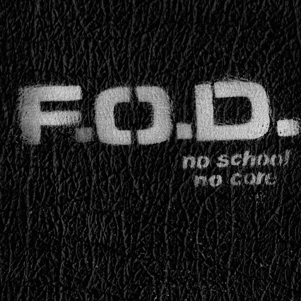 Image of FLAG OF DEMOCRACY - NO SCHOOL NO CORE CD