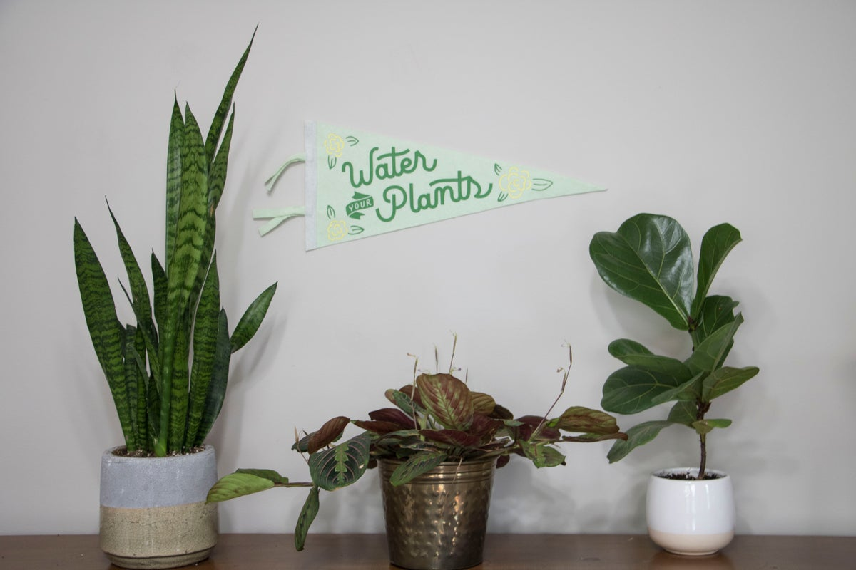"""Image of Water Your Plants 18"""" Pennant"""