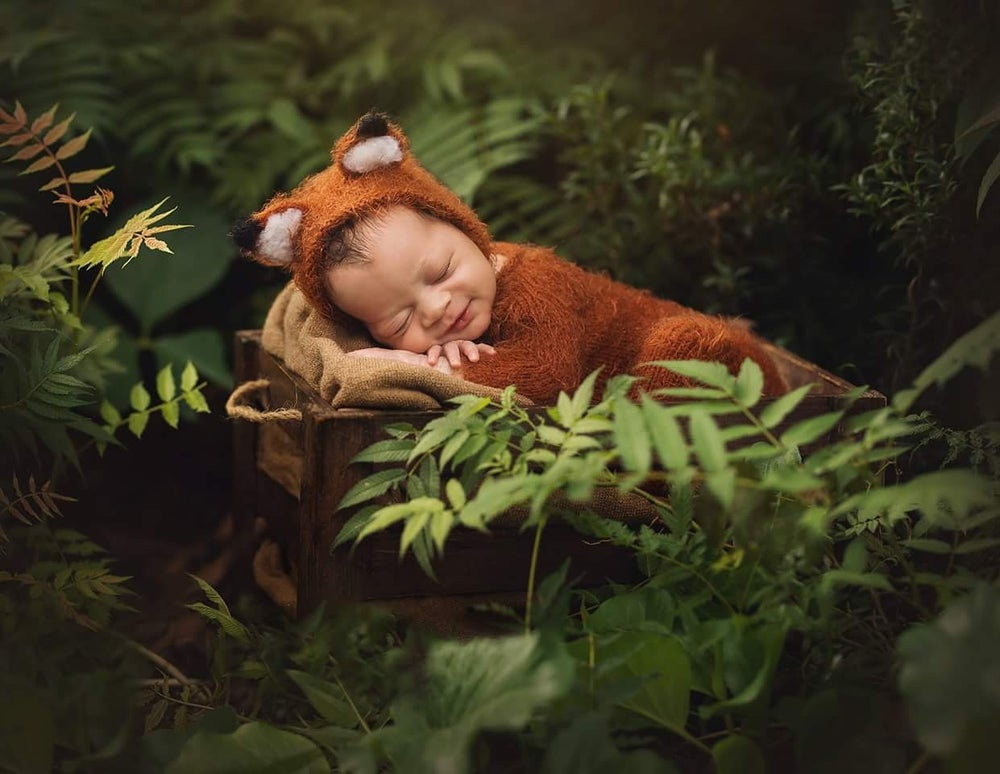 Image of Newborn and sitter  6-12 monts fox outfit. Made to order
