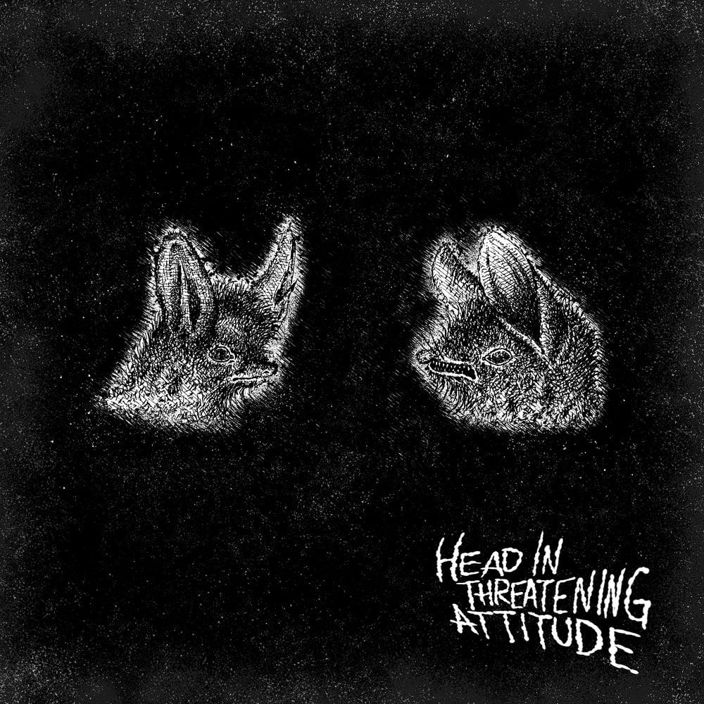 Image of NATTERERS - HEAD IN THREATENING ATTITUDE LP