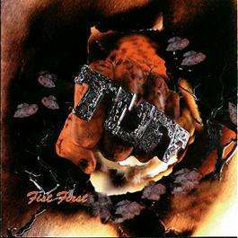 "Image of TUFF ""Fist First"" CD"