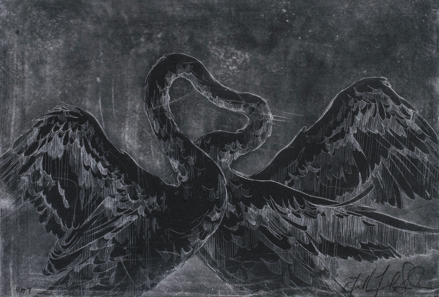 Image of THE PSYCHIC POWER OF ANIMALS <br> Silver Etching