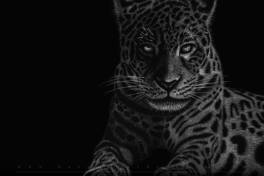 Image of Jaguar
