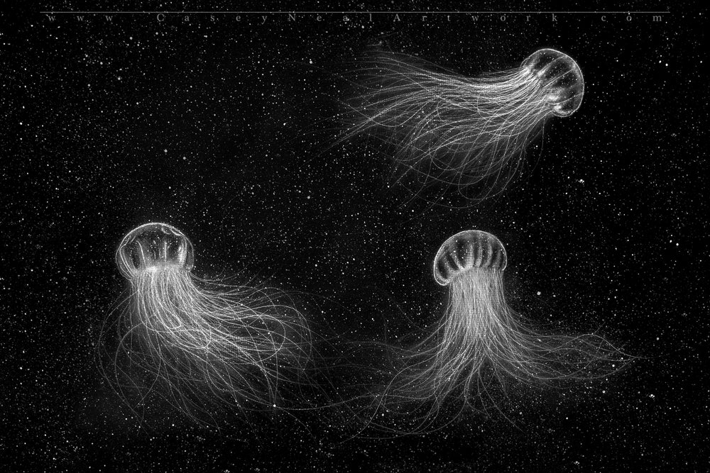 Image of Jellyfish In Space