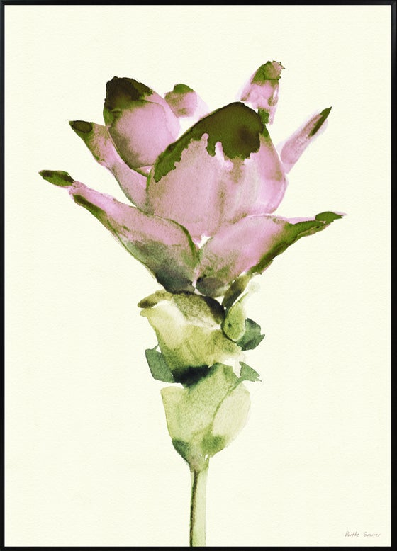 Image of Curcuma 50x70cm No.5009