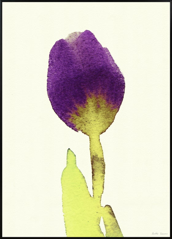 Image of Tulipa Big 50x70cm No.5015