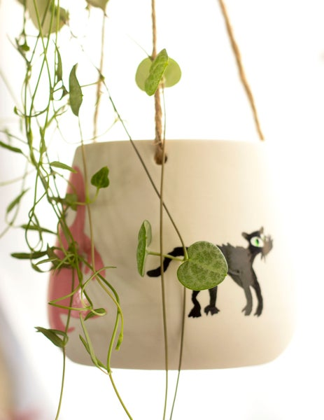 Image of hand-painted hanging planter ***one-off*** edition