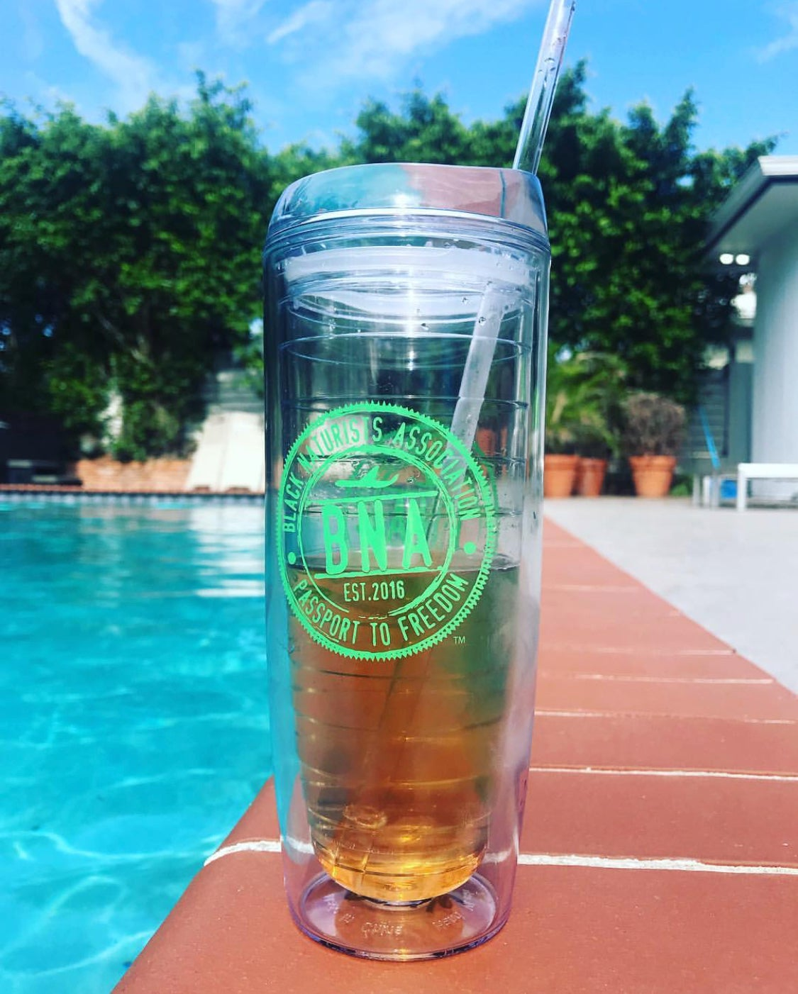 Image of Official BNA Branded Adult Sippy Cup