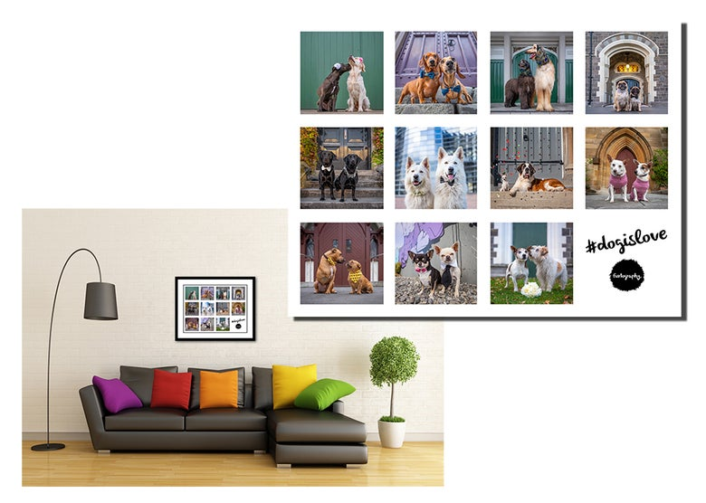 Image of #DogIsLove - Limited Edition Framed Fine Art Print
