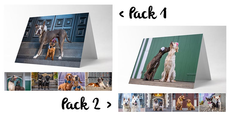 Image of #DogIsLove - Greeting Cards (5 Pack)