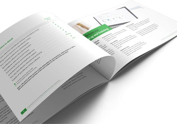Image of QuickBooks Set Up and Training Brochure Print