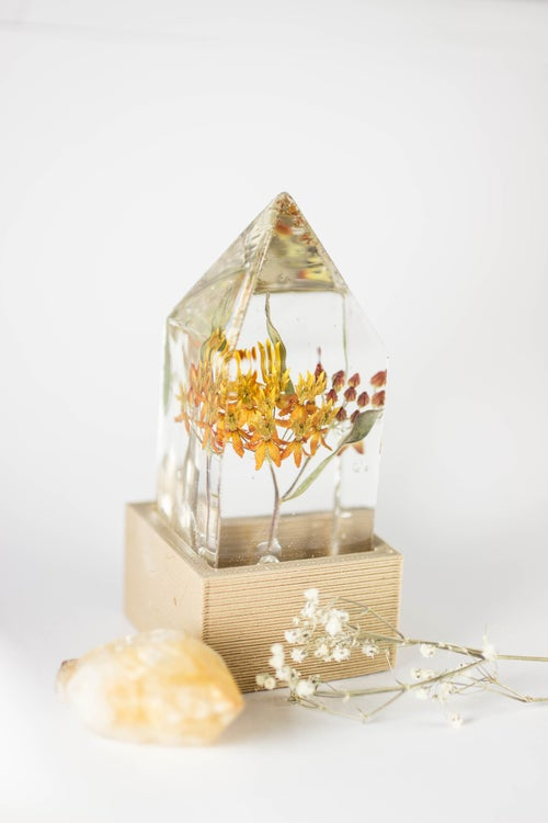 Image of Butterfly Weed (Asclepias tuberosa) - Floral Prism Desk Lamp