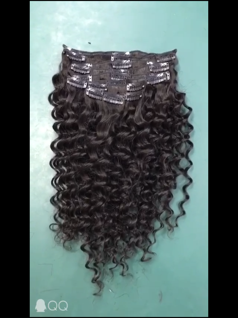 Celebrity Hair Corp Clip Ins