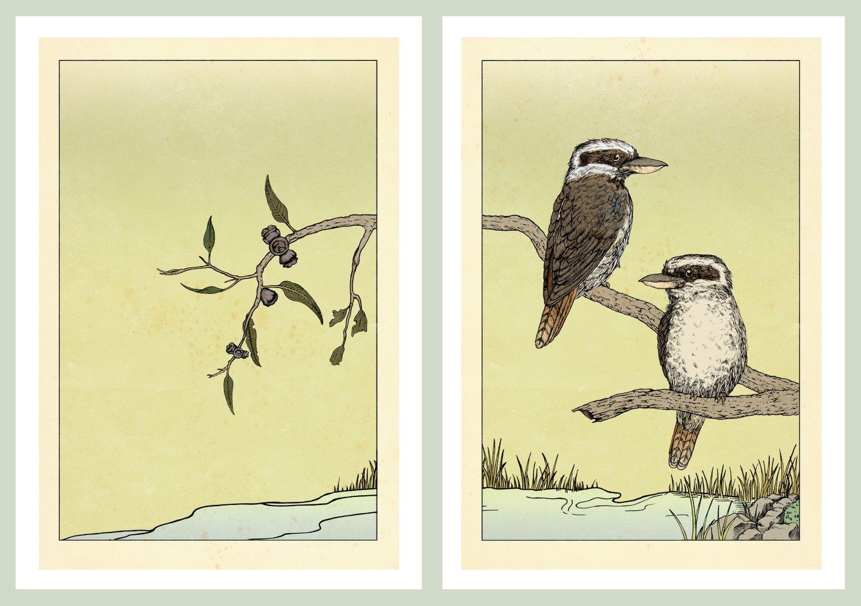 Image of Laughing Kookaburras