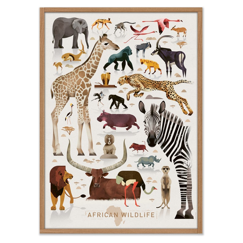 Image of African Wildlife