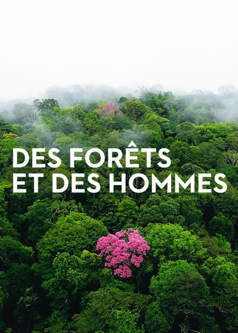 Image of  DES FORÊTS ET DES HOMMES de   Yann Arthus-Bertrand