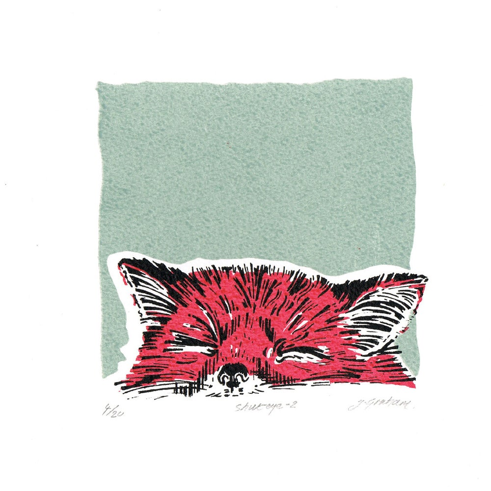 Image of Fox, Shut Eye-2
