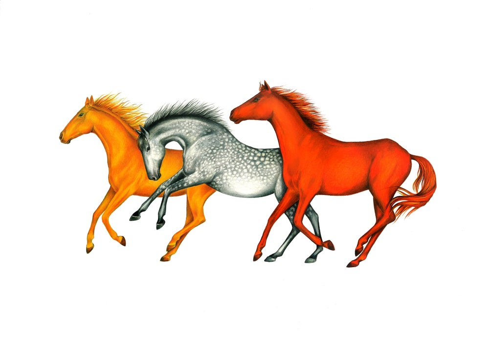 """Earth, Wind and Fire"". Fine art print of a drawing portraying three galloping horses."