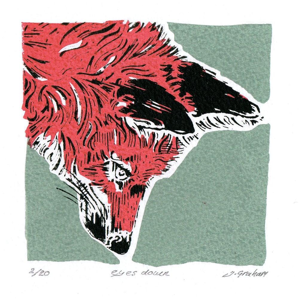 "Image of Mini fox ""eyes Down"""