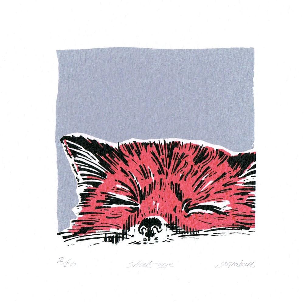 "Image of Mini fox ""Shut eye"""