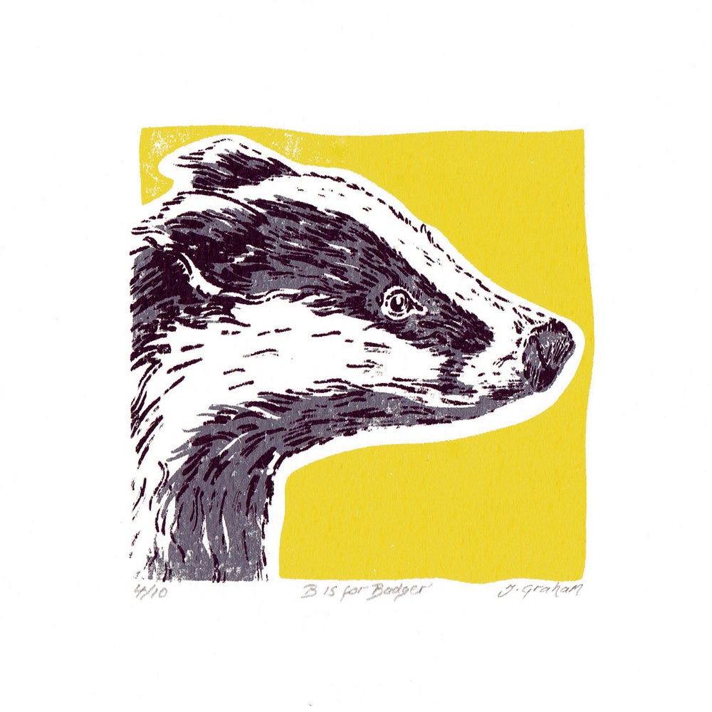 Image of B is for Badger