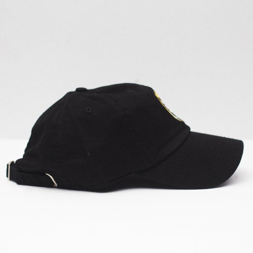 Image of Lion Soul Dad Hat